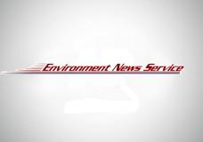 General Motors Chief Bets on Fuel-Efficient Vehicles